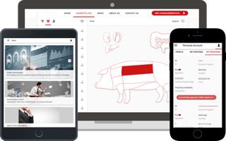 wholesale e-commerce platform