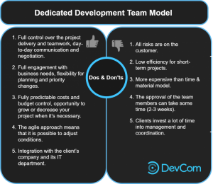 Dedicated Development Team: Advantages and disadvantages